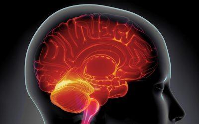 Bevidsthedsterapi (PSYCH-K)